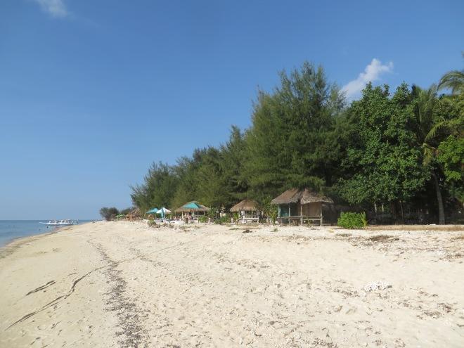 Beach digs