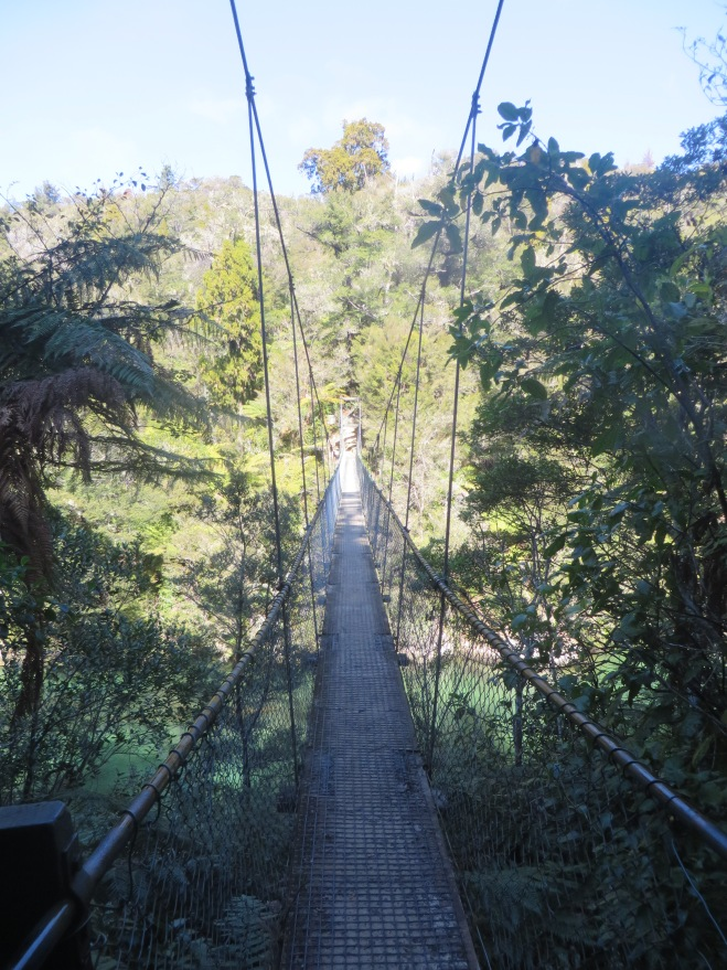 Suspension bridge-- very Indiana Jones